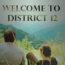 welcome-to-district-12.tumblr.com