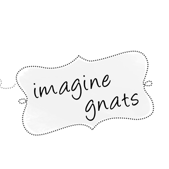 imagine gnats