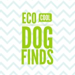 Eco Cool Dog Finds