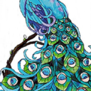 The Periwinkle Peacock