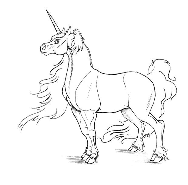 The Male Unicorn Coloring Page Unicorn Coloring Pages Coloring Pages Horse Pattern