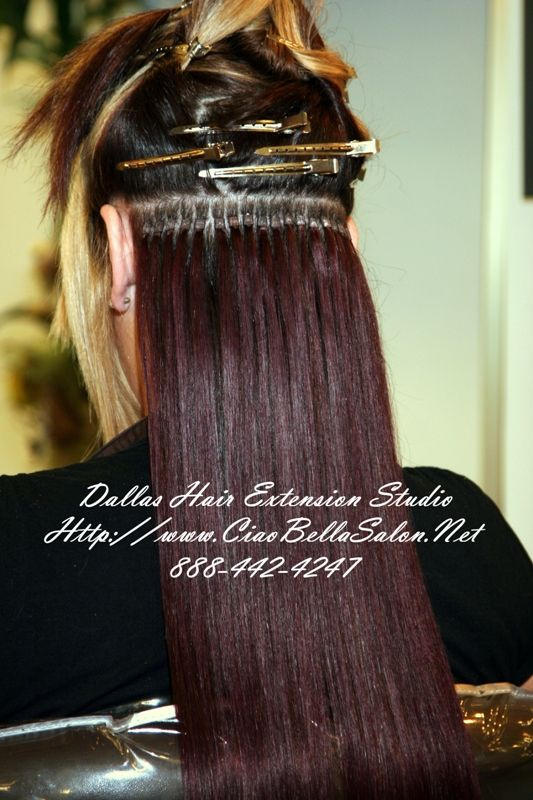 Hair Extention Displays Remy Hair Extensions Ciao Bella And
