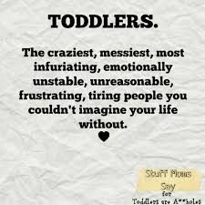 Toddler Quotes Alluring Image Result For Funny Toddler Quotes  Funny  Pinterest  Funny