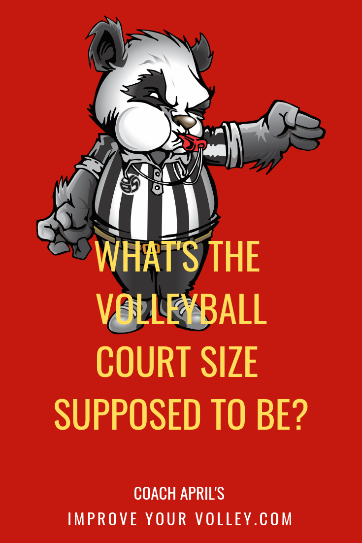 What S The Volleyball Court Size Volleyball Basics For Beginners Volleyball Rules Volleyball Net Height Volleyball Court Size