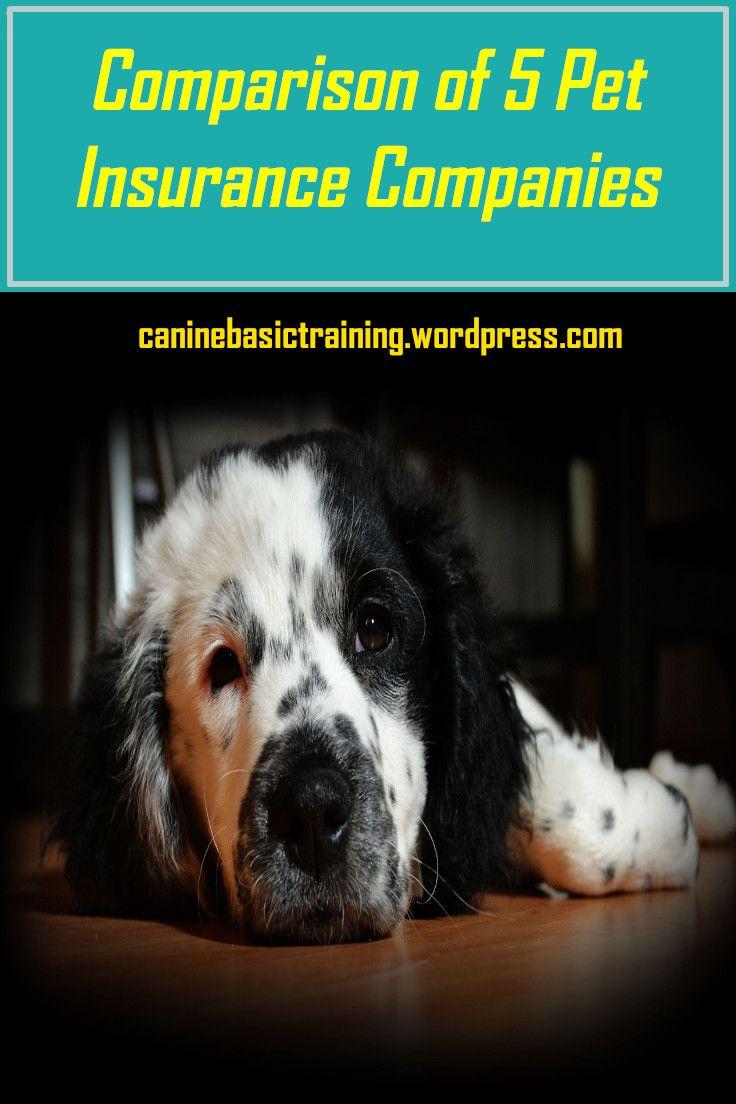 A Comparison of Five Pet Health Insurance Plans Pet