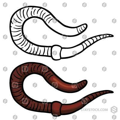 How To Draw A Worm Step By Step Easy Easy Animals To Draw Https Htdraw Com Wp Content Uploads 2018 10 How To D Easy Animal Drawings Easy Animals Drawings