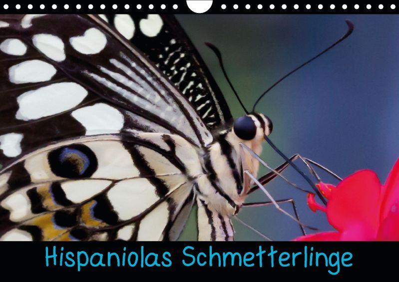 Hispaniolas Schmetterlinge - CALVENDO