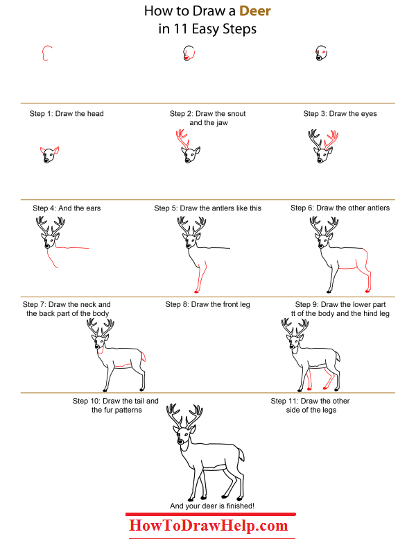 how to draw a deer step by step lots of drawing tutorials at www