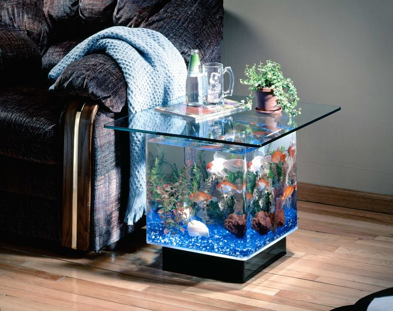 Side Table aquariumLove it my house Pinterest Aquariums