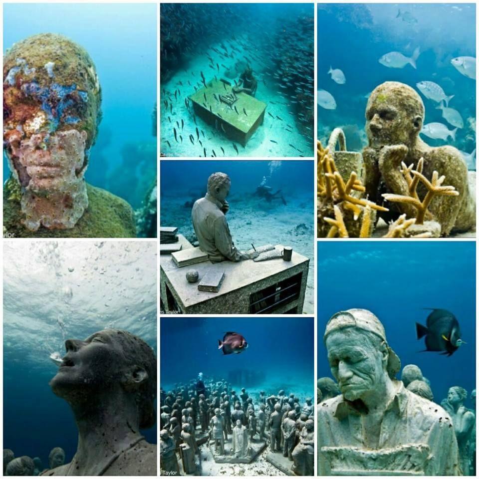 Museo de Musa (Holbox) Ven a vivir una experiencia subacuática increíble!