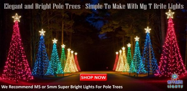 Pole Trees Are Really Simple To Make And Create A Great Effect In Your Christmas Light