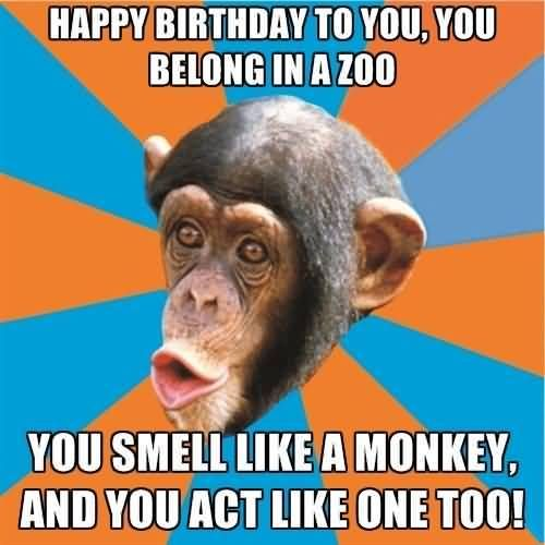 Funny Birthday Message, Birthday Wishes Funny, Birthday Messages