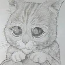Resultado De Imagen Para Dibujos De Animales Reales A Lapiz A