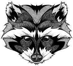 Картинки по запросу енот арт | Рисунки животных ...