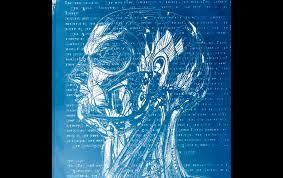 cyanotypes artists - Google Search