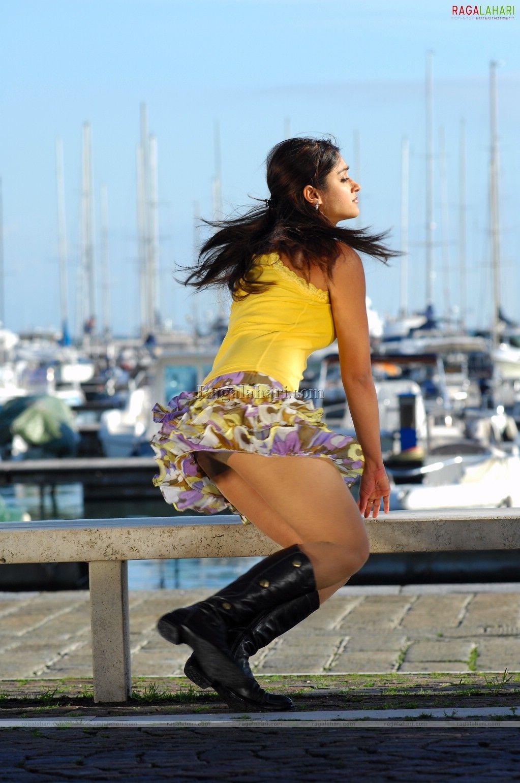 Bollywood actress nargis fakhri and ileana d'cruz hot thigh butts