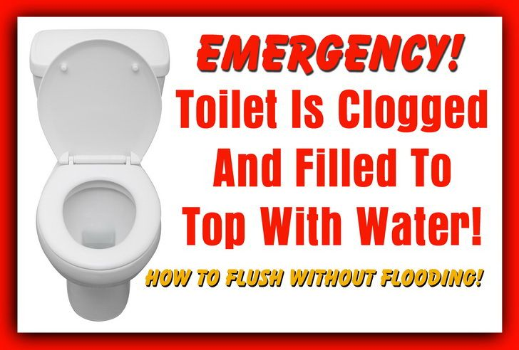 Toilet Is Clogged And Filled To Top With Water How To Flush Without Flooding Clogged Toilet Toilet Plunger