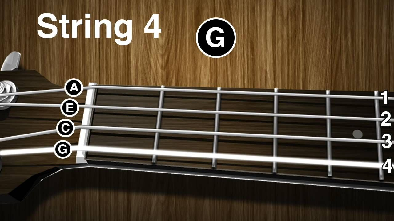 How to tune a Ukulele Ukulele tuning video ( gCEA