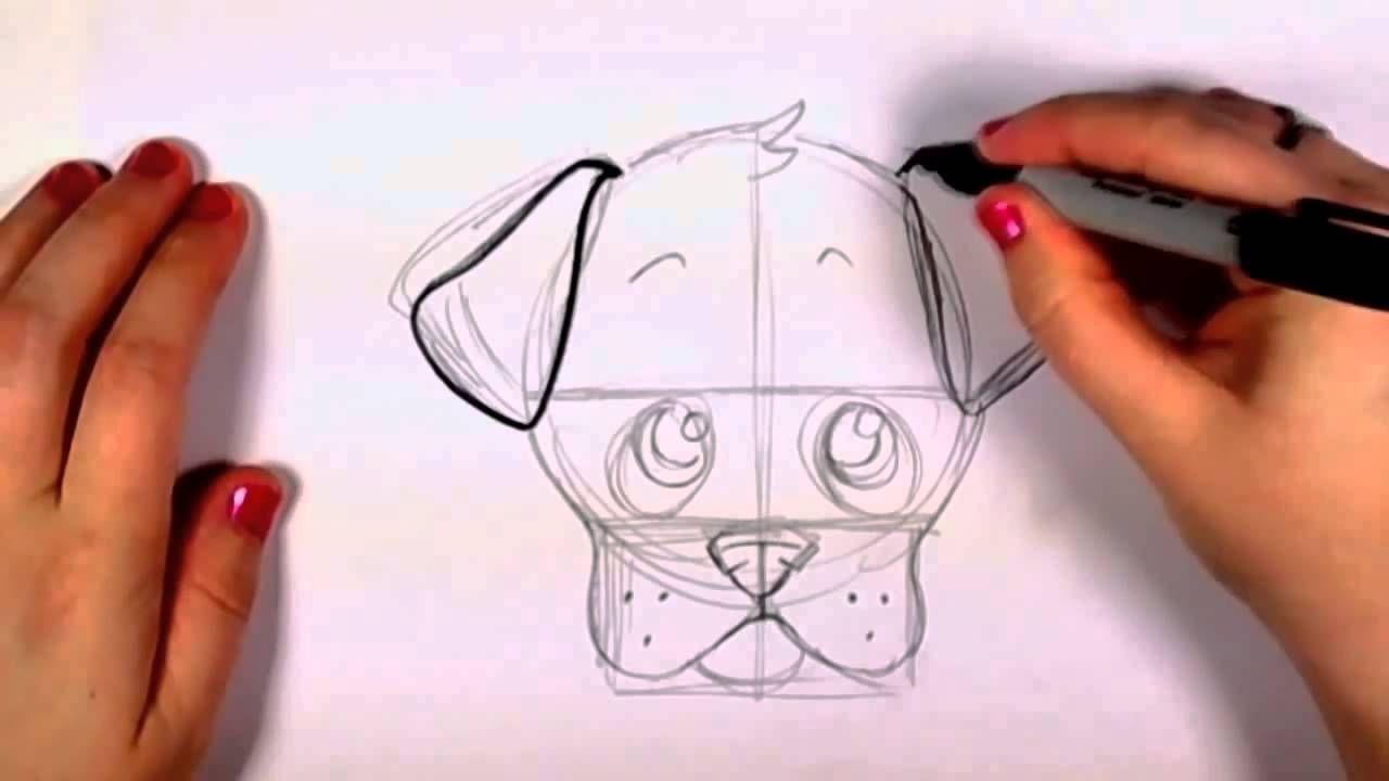 Adım Adım Gerçekçi Resim Sevimli Köpek çizimi Storyboard Drawing