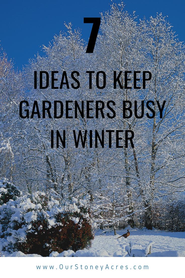 00051b95d27f8c622cf9292b9f0d5c05 - What Can Gardeners Do In Winter