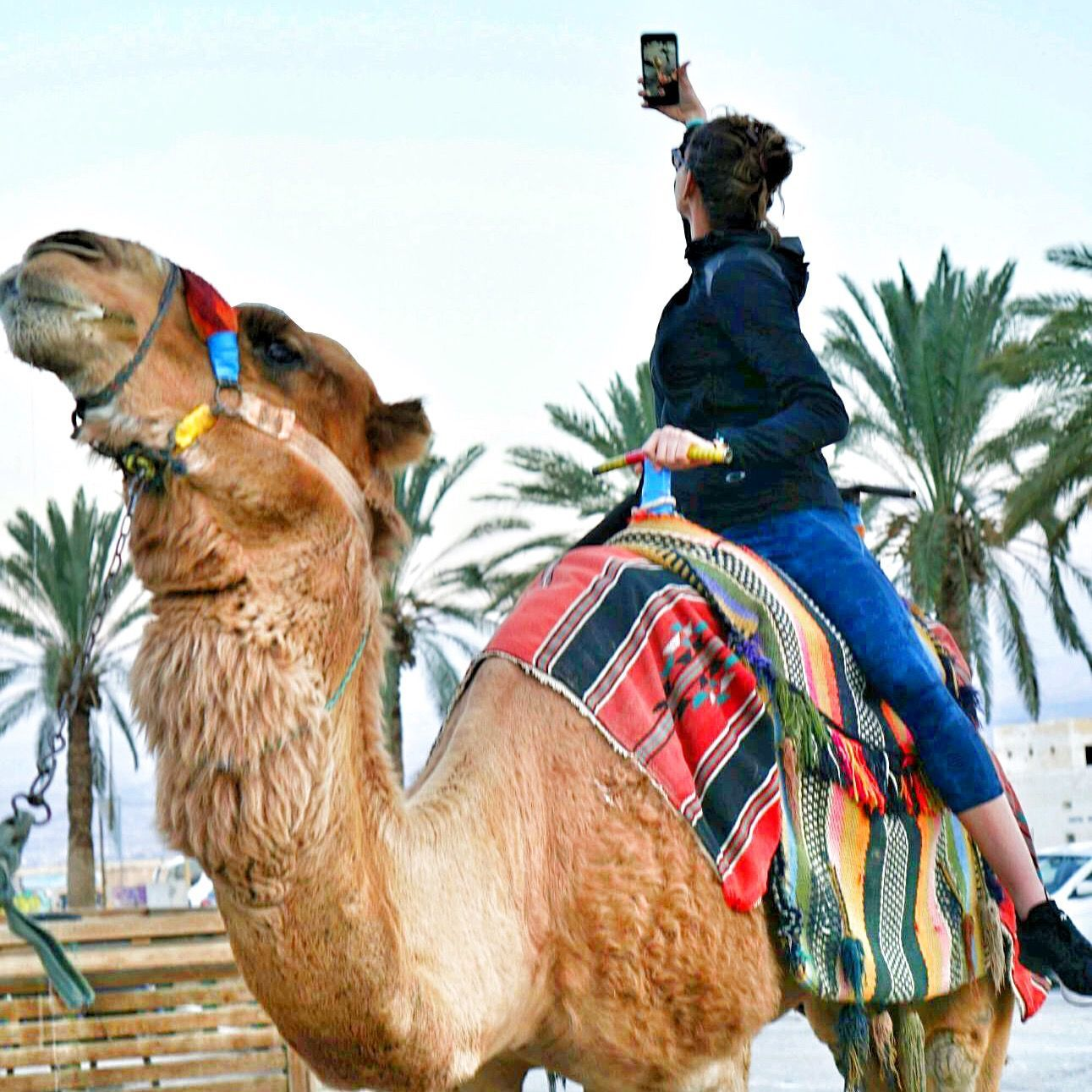 Destination: Israman. Eilat, Israel — Athlete Food #athletefood Destination: Israman. Eilat, Israel #athletefood