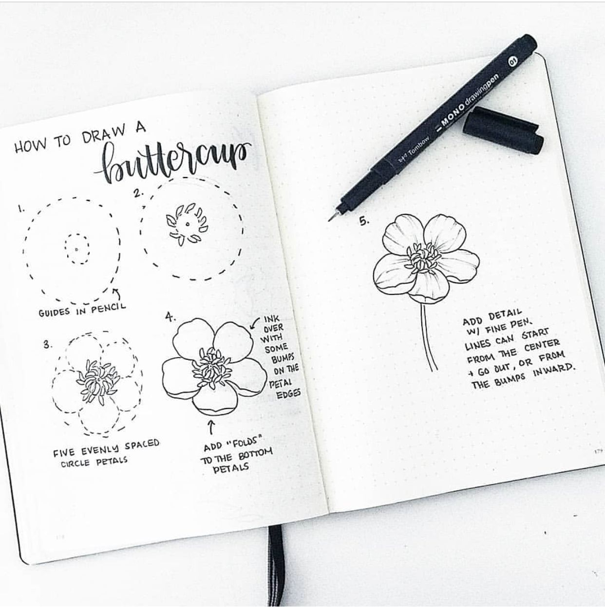 How to doodle a buttercup | Bullet Journal Inspo in 2019 | Flower