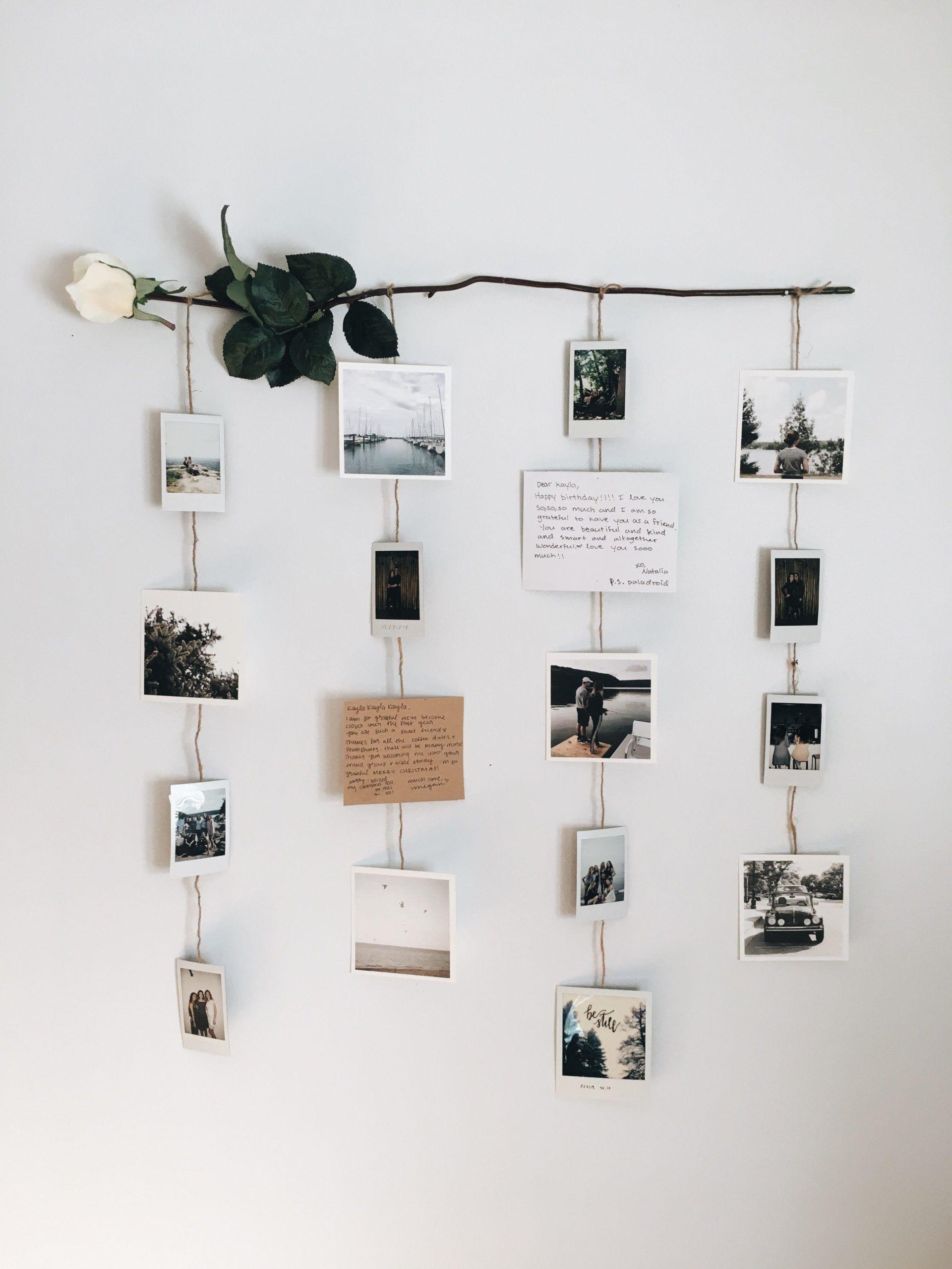 Photo of Exhibición de la imagen de la flor: pared de la imagen, polaroides, pared polaroid, flores,