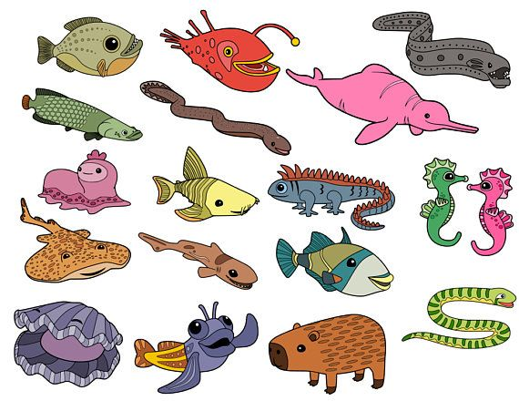 Octonauts Creatures Collection - svg files