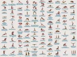 image result for iyengar yoga poses chart  all yoga poses
