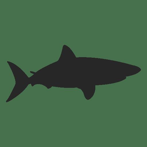 Gray Shark Silhouette Ad Sponsored Sponsored Silhouette Shark Gray Shark Silhouette Shark Reef Shark