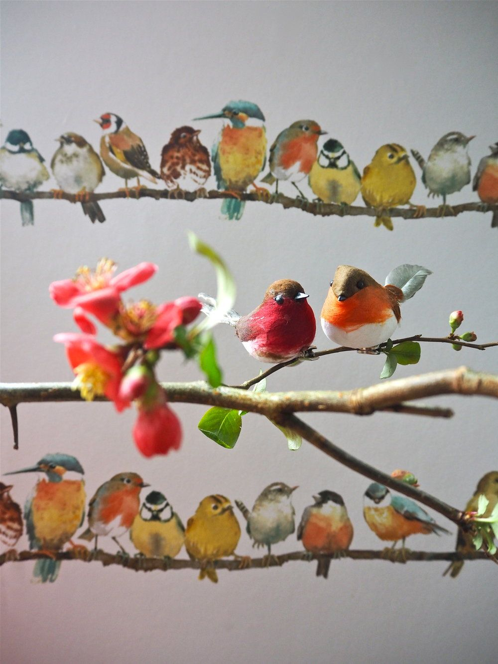 Birds, Flowers & Butterflies The New Spring Wallpaper