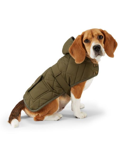 Quilted Hooded Dog Coat For The Pet Home Ralphlauren Com