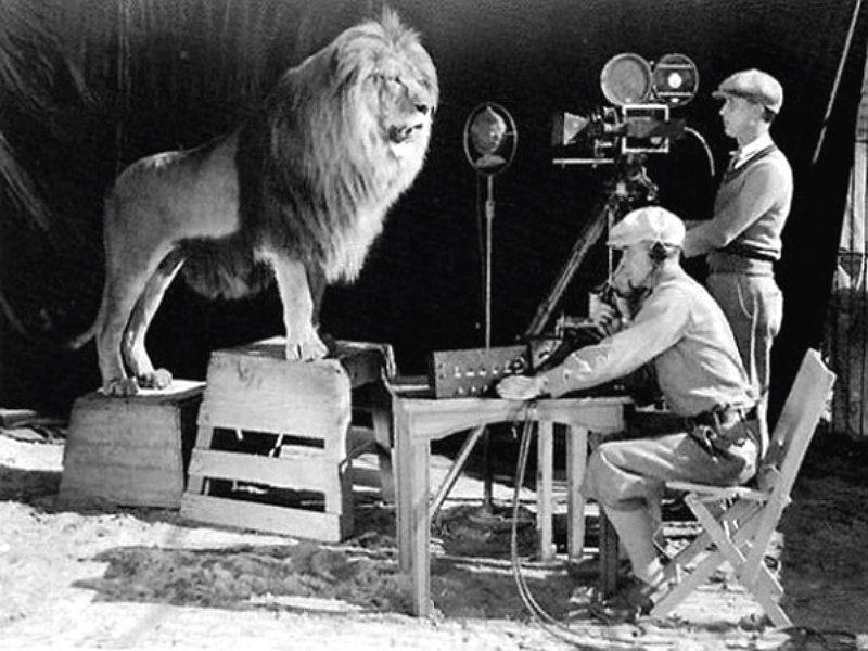 O inicio da MGM 1929