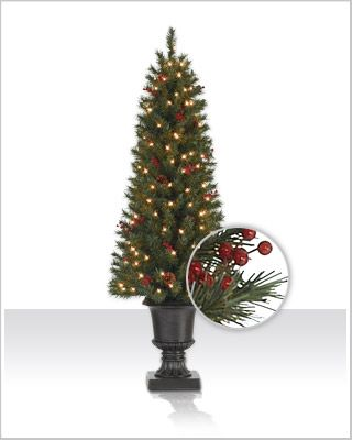 Delightfully Petite Our Lewis Potted Pine Provides An Effortless Way To Infuse Christmas Ch Pine Christmas Tree Colorful Christmas Tree Potted Christmas Trees