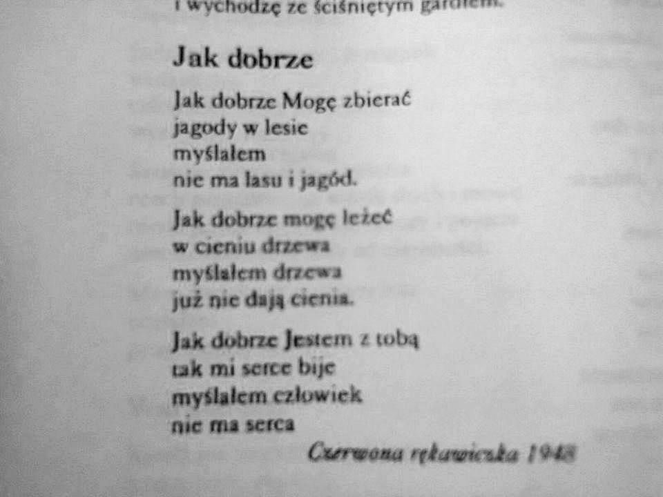 Tadeusz Różewicz Wiersze Poezja I Literatura