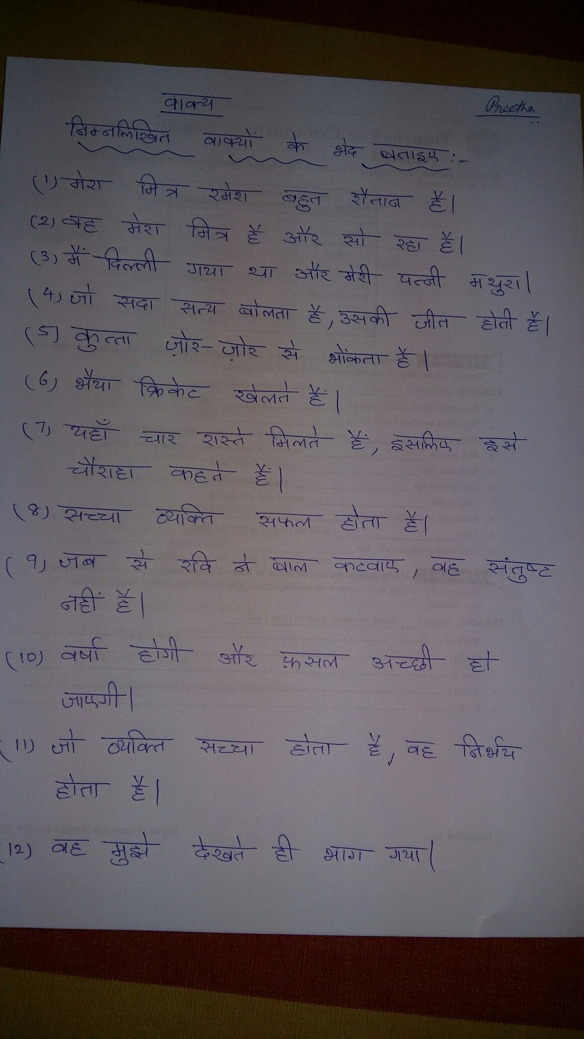 Vakya Worksheet Hindi