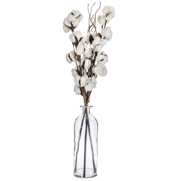 Cotton Stems In Glass Vase Cotton Decor Glass Vase Vases Decor