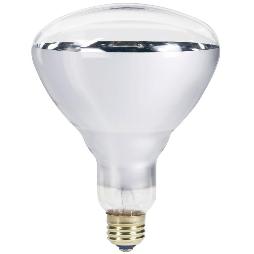 Philips 250 Watt 120 Volt Incandescent Br40 Heat Lamp Light Bulb