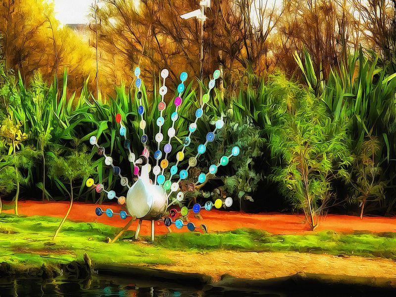 Funky Bird - Acrylic