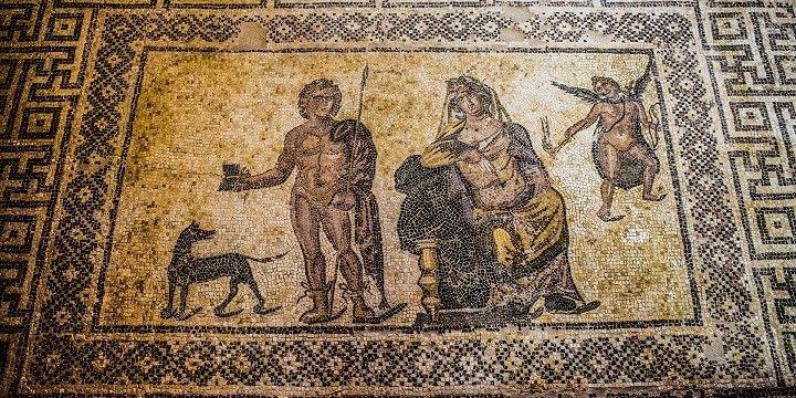 Mosaic Fields, Paphos, Cyprus, Europe