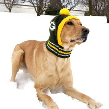 Get your dog game-day ready with the Green Bay Packers Dog Knit Hat! Keeps your dog toasty warm through the whole football season. Features a stretch scarf to keep from sliding off your dog's head. #football #gear #dog #GBP