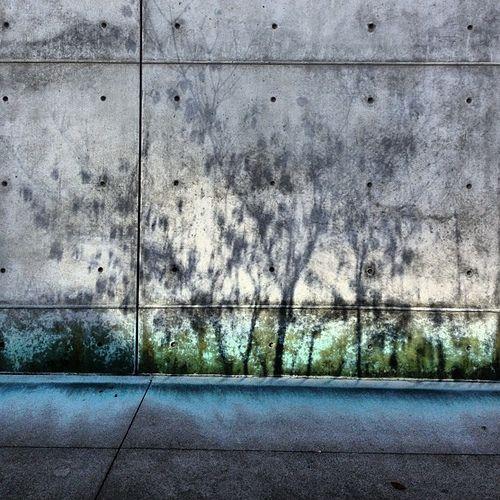 shadows on city walls