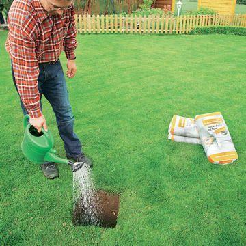 Ein Guter Halt Fur Die Waschespinne Waschespinne Wasche Gartengestaltung
