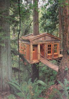 secret cabin cottage in woods - Google Search