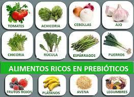resultado de imagen para probioticos naturales para adultos