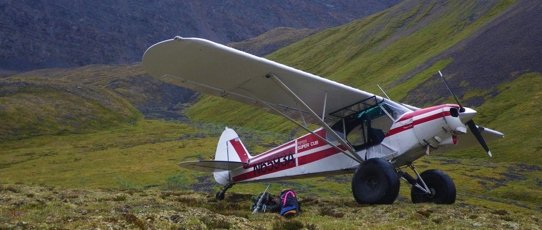 Bush plane, General aviation, Model airplanes