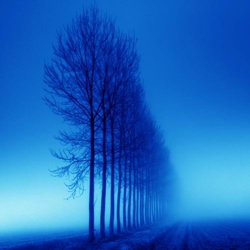 Цвет звёзд белые голубые