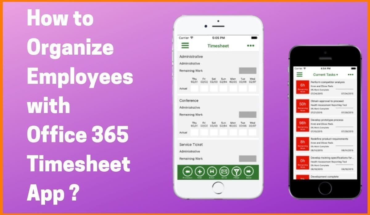How to Organize Employees with Office 365 Timesheet App