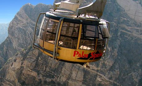 Palm Springs Tramway Discount Tickets Best Price Palm Springs Tram Los Angeles Day Trips Palm Springs