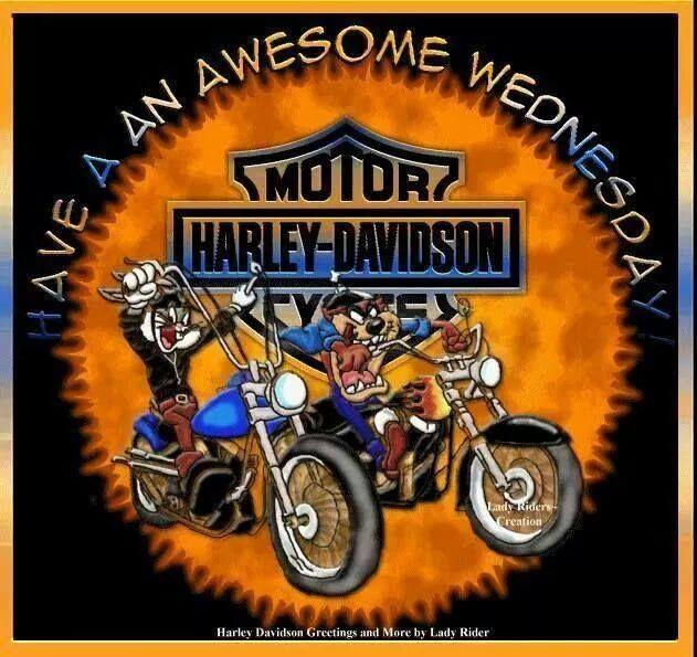 Have An Awesome Wednesday   Bikes   Pinterest   Motorräder und Vorlagen